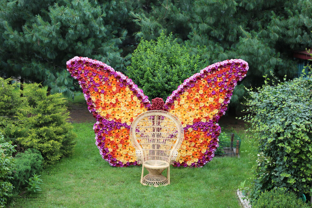 Funny_Flower_Kwiatowy_Motyl 3